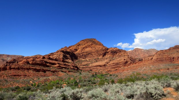 View of the Red Cliffs from Anasazi Trail, Red Cliffs National Conservation Area, Utah