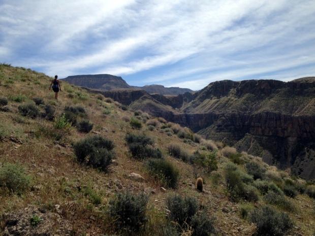 Meghan of the Mountain, Virgin River Canyon Recreation Area, Arizona