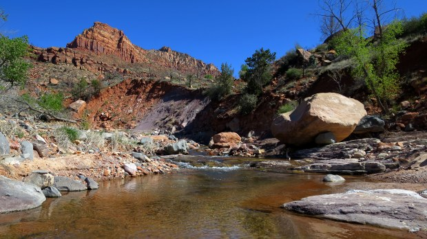 La Verkin Creek Canyon, Zion National Park, Utah