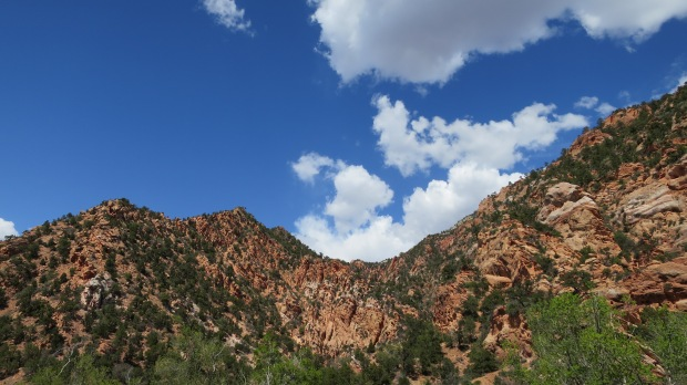 Near trailhead on return hike, Spring Creek Canyon, Utah