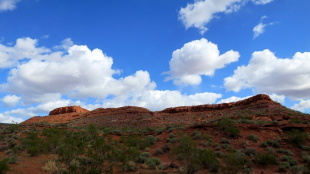 Dino Cliffs Trail, Red Cliffs Desert Reserve, Utah