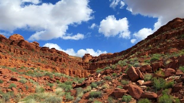 Dino Cliffs, Red Cliffs Desert Reserve, Utah