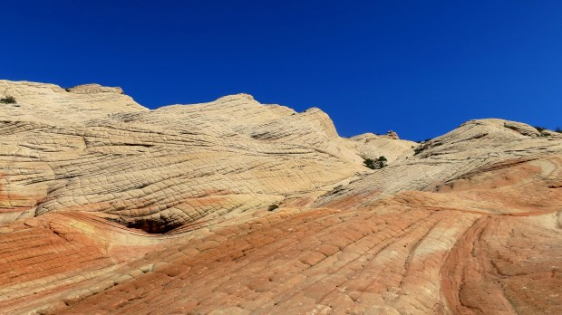 More closeups of petrified sand dunes, Yant Flat, Dixie National Forest, Utah