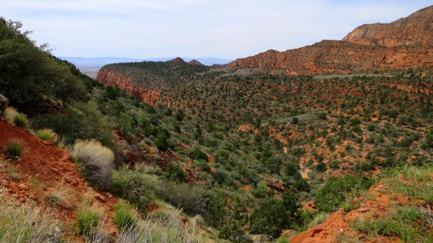 View along the reef, Silver Rim Trail, Dixie National Forest, Utah