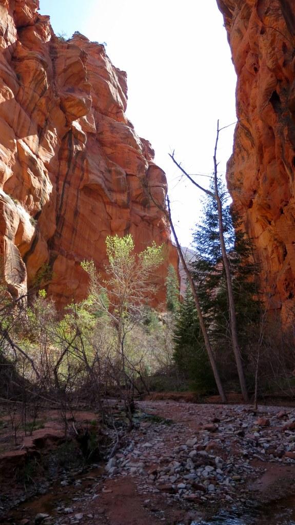 Spring Creek Canyon, Utah