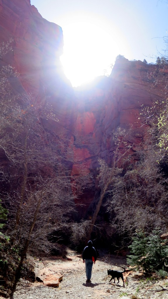 Sun coming over the canyon walls, Spring Creek Canyon, Utah