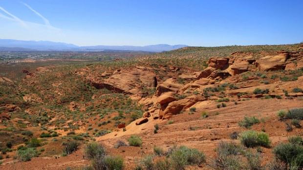Red Cliffs Desert Reserve, Utah