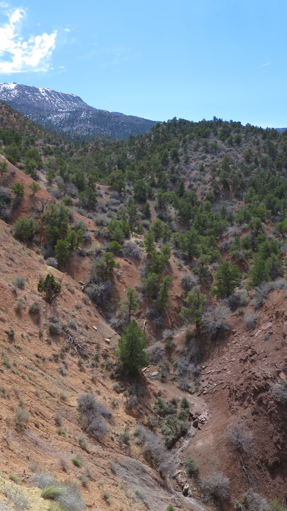 Canyon, Cedar City, Utah