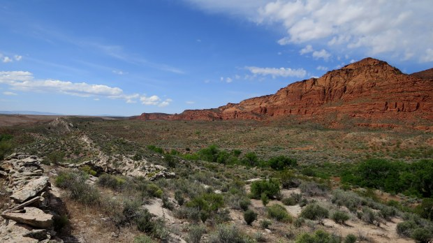 Hiking along the reef, Red Cliffs Conservation Area, Utah