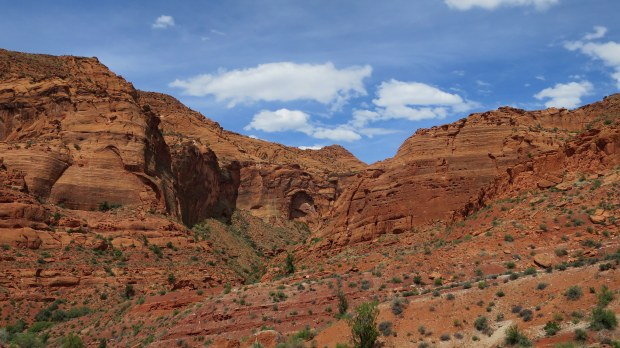 The canyon we decided to explore, Red Cliffs Conservation Area, Utah