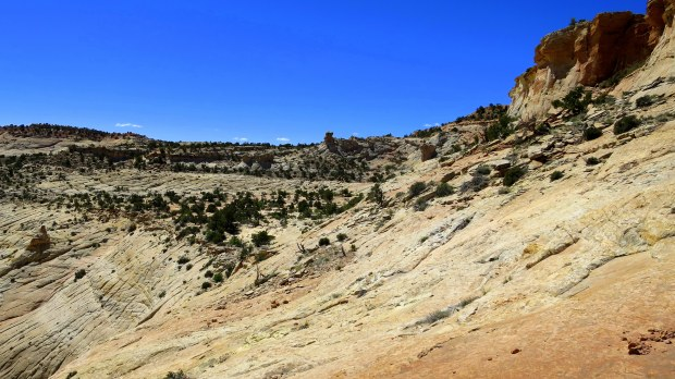 Head of the Rocks, Scenic Byway 12, Utah