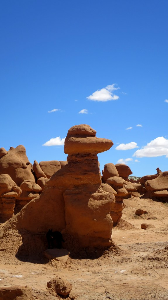 Duck, Goblin Valley State Park, Utah