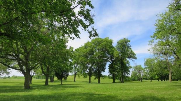 Cahokia Mounds State Historic Site, Illinois