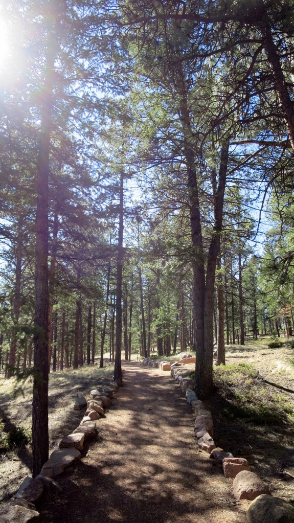 Ponderosa Loop Trail, Florissant Fossil Beds National Monument, Colorado