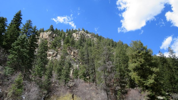 Looking up near the trailhead, Catamount Trail, Green Mountain Falls, Colorado