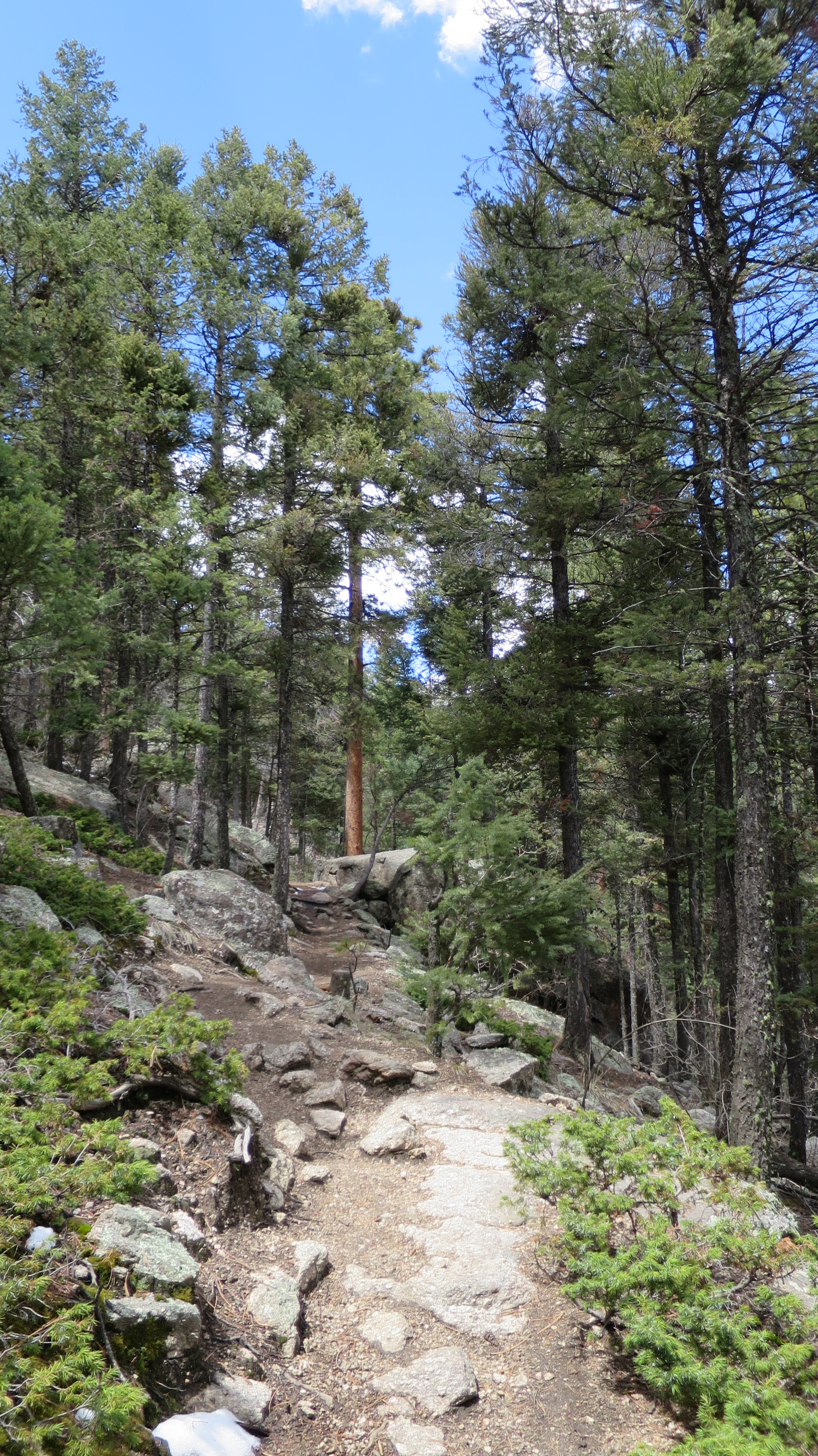 green mountain falls For sale: green mountain falls, co 80819 ∙ $75,000 ∙ mls# 6048728 ∙ easy access to hiking trails, creek and waterfall own your piece of paradise.