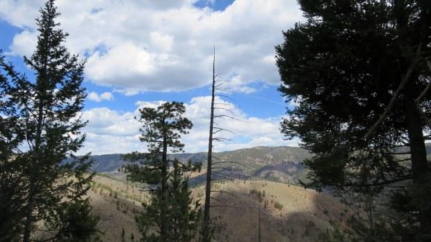 Catamount Trail, Green Mountain Falls, Colorado