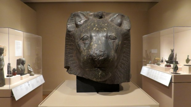 Head of Sekhmet, Egyptian, ca. 1554 – 1305 BC, Detroit Institute of Arts, Michigan