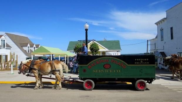 Freight horses, Mackinac Island, Michigan