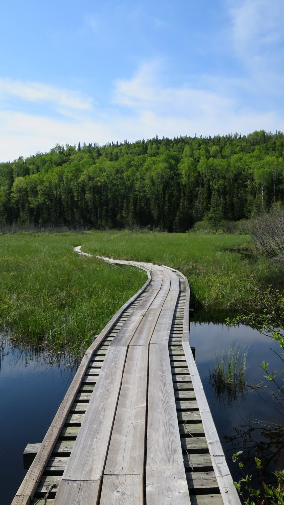 Floating boardwalk, Coastal Trail, Pukaskwa National Park, Ontario, Canada