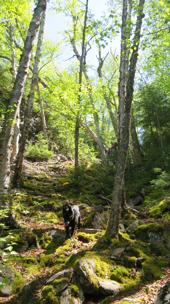 Descending moss-covered rocks, Casque Isles Trail, Schreiber, Ontario, Canada