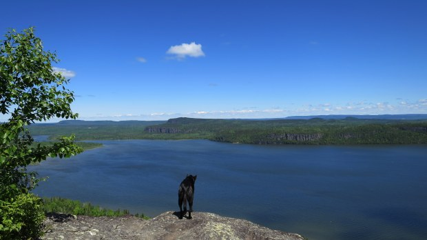 Fearless, Eagle's Ridge lookout, Nipigon River Trail, Ontario