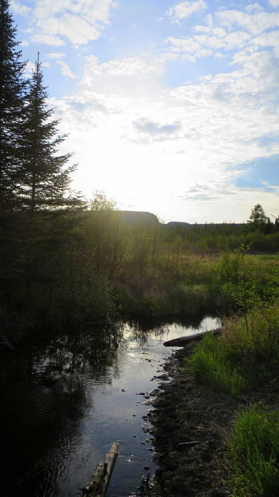 Wetlands near trailhead, Top of the Giant Trail, Sleeping Giant Provincial Park, Ontario, Canada