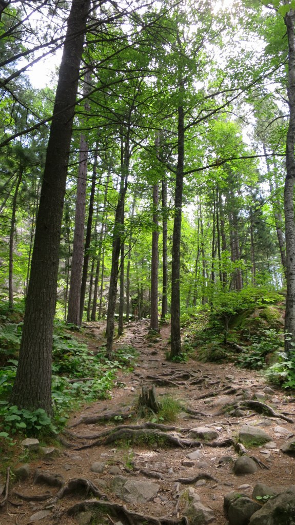 Trail to Sugarloaf Mountain, Marquette, Michigan
