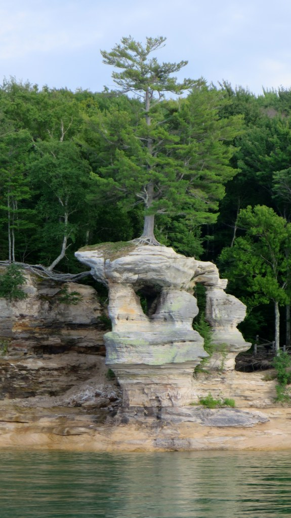Tree roots extending to sea stack, Pictured Rocks National Lakeshore, Michigan