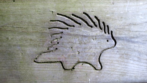 Carvings on bench along West River Trail, Porcupine Mountains Wilderness State Park, Michigan