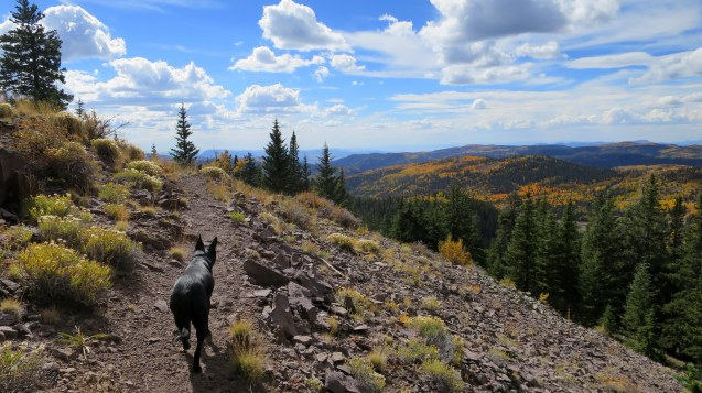 Skyline Trail, Fishlake National Forest, Utah