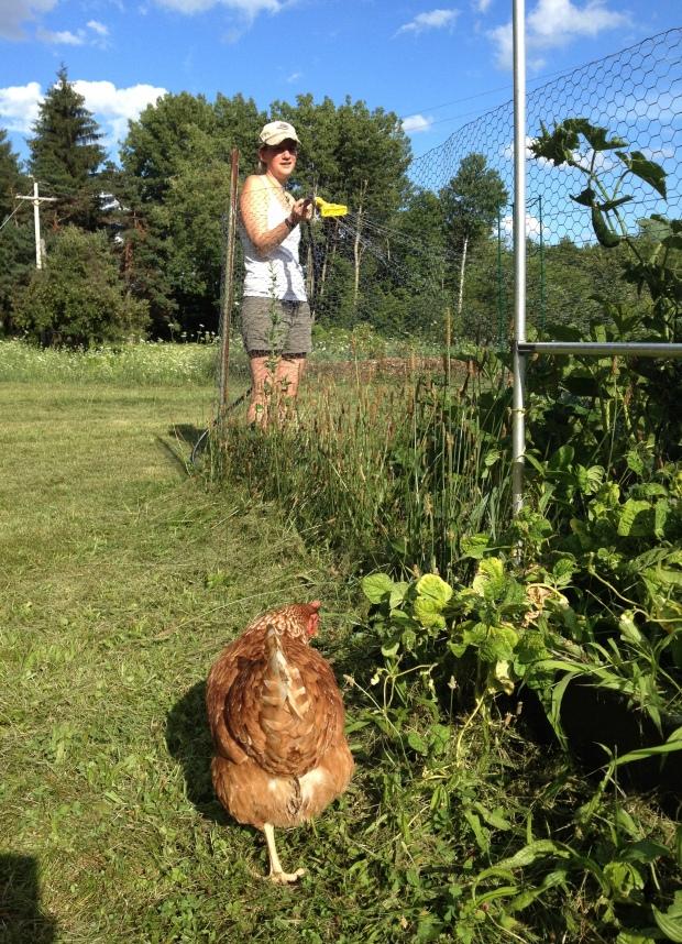Chicken butt and Rachel watering the garden