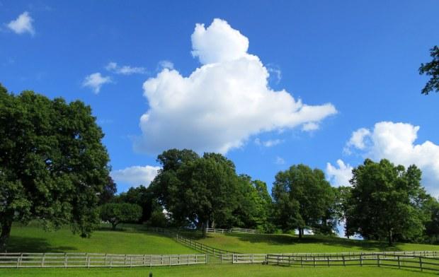 Horse farm bordering Rockefeller State Park Preserve, New York