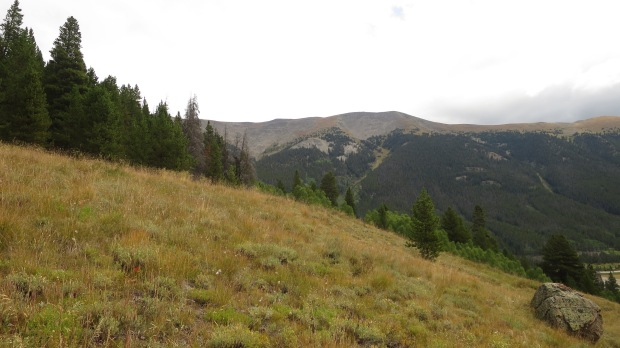 Gore Range Trail, White River National Forest, Colorado