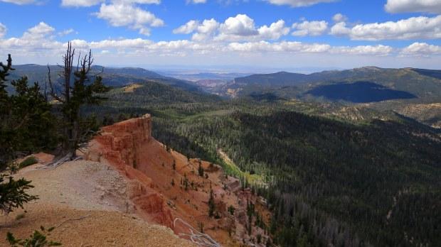 Blowhard Trail, Dixie National Forest, Utah