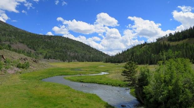 Zedds Meadow, Fishlake National Forest, Utah