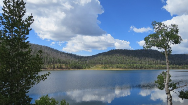 Navajo Lake Loop Trail, Dixie National Forest, Utah