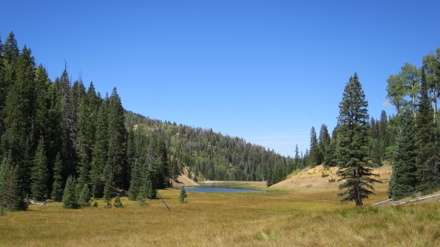 Anderson Meadow Reservoir, Fishlake National Forest, Utah