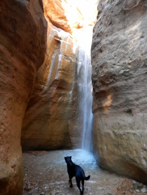 Another waterfall, Ashdown Gorge Wilderness, Dixie National Forest, Utah