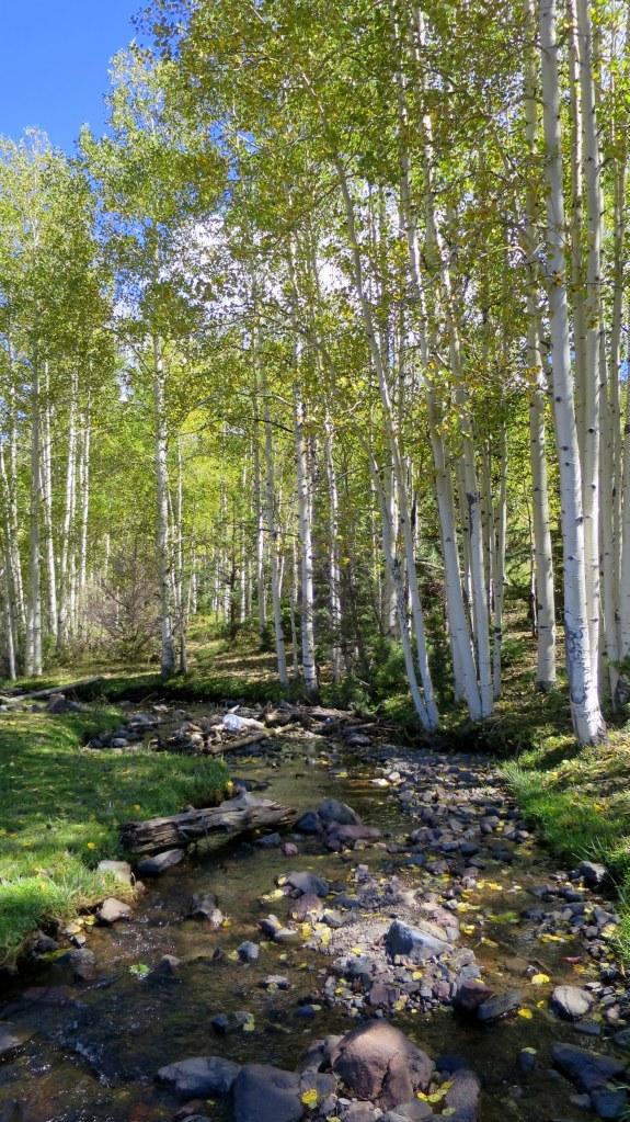 Yankee Meadows, Dixie National Forest, Utah