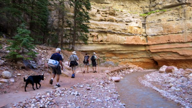 Walking through Ashdown Gorge Wilderness, Dixie National Forest, Utah