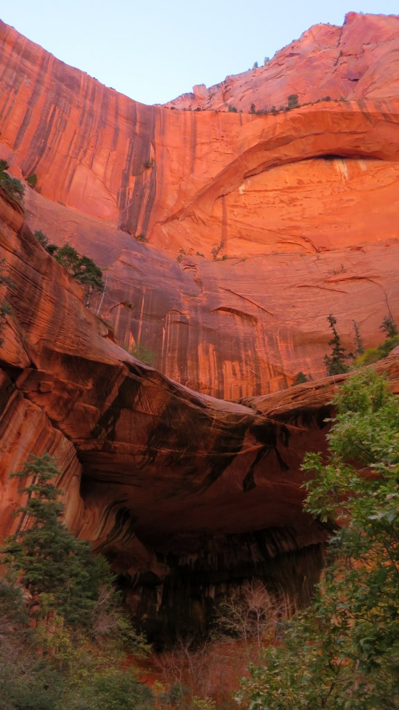 Double Arch Alcove, Taylor Creek Trail, Kolob Canyon, Zion National Park, Utah