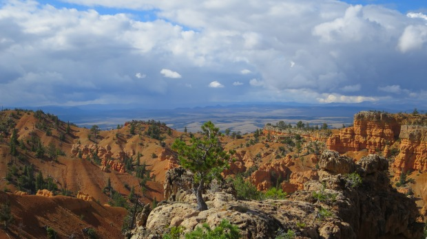 Castle Bridge Trail, Red Canyon, Dixie National Forest, Utah