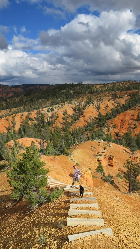 Glad they put steps here – this is way way steeper than it looks, Golden Wall Trail, Red Canyon, Dixie National Forest, Utah