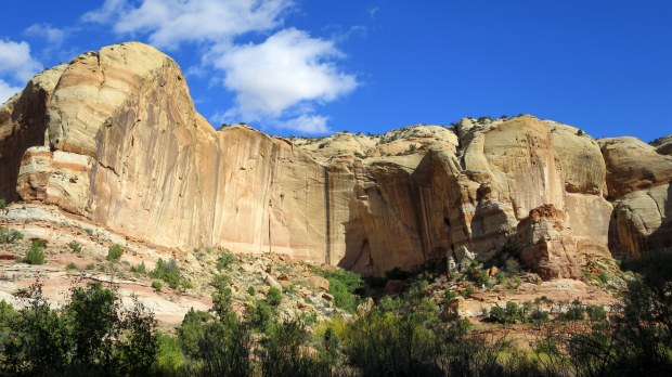 Lower Calf Creek Falls Trail, Grand Staircase-Escalante National Monument, Utah