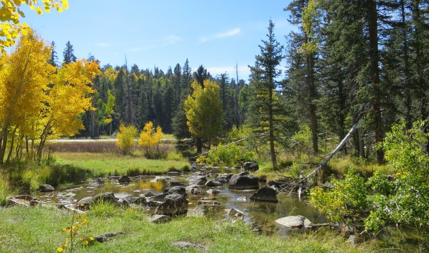 Duck Creek, Dixie National Forest, Utah