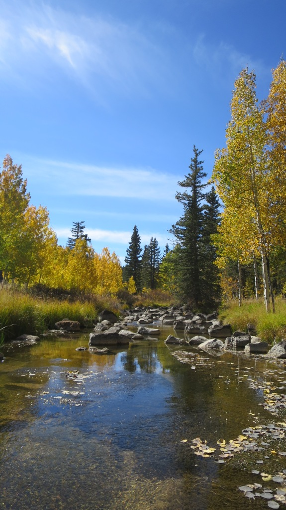 Duck Creek, Dixie National Forest, Utah