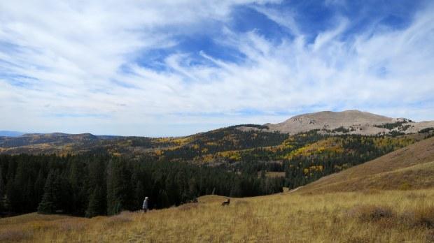 Tom and Abby near Big John Flat, Fishlake Mountains National Forest, Utah