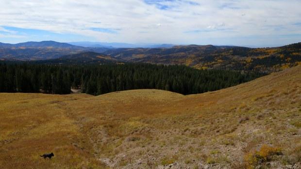 Near Big John Flat, Fishlake Mountains National Forest, Utah