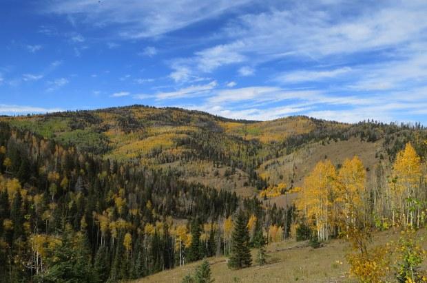Fishlake Mountains National Forest, Utah